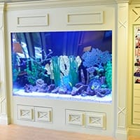 Fish tank in waiting room
